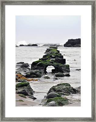 Framed Print featuring the photograph Into The Ocean by Minnie Lippiatt