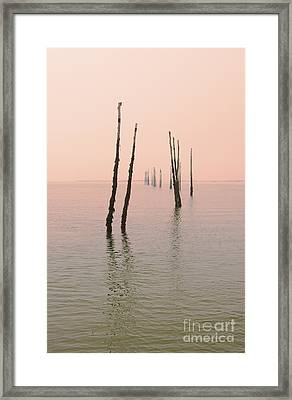 Into The Pink Sunset... Framed Print