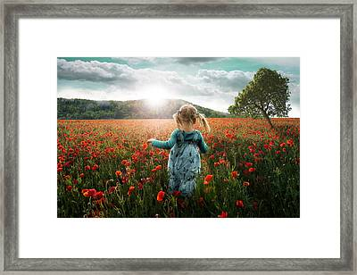 Into The Poppies Framed Print by John Wilhelm