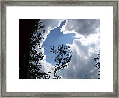 Into The Sky Framed Print by Aimee L Maher Photography and Art Visit ALMGallerydotcom