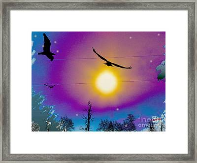 Into The Sun Framed Print by Bobby Hammerstone