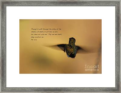 Framed Print featuring the photograph Into The Sunset by Debby Pueschel