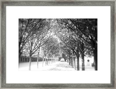Into The Unknown Framed Print by Ivy Ho