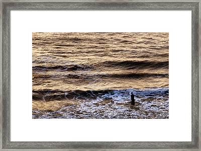 Into The Vast Unknown Framed Print by Joe Bonita