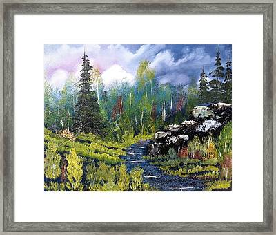 Into The Wilderness Framed Print by Roy Gould