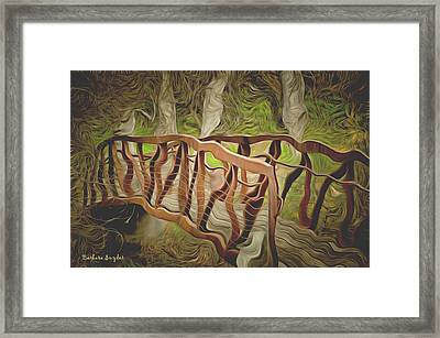 Into The Woods Framed Print by Barbara Snyder
