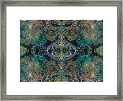 Intrigue Of Mystery One Of Four Framed Print by Betsy Knapp