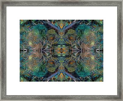 Intrigue Of Mystery Three Of Four Framed Print by Betsy Knapp