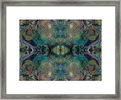 Intrigue Of Mystery Two Of Four Framed Print by Betsy Knapp