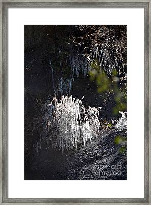 Intriguing Icicles In Yosemite Framed Print