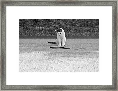 Introduction Framed Print