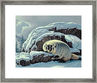Intrusion -  Badger Framed Print
