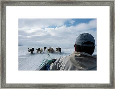 Inuit Hunter And Husky Dog Team Framed Print by Louise Murray