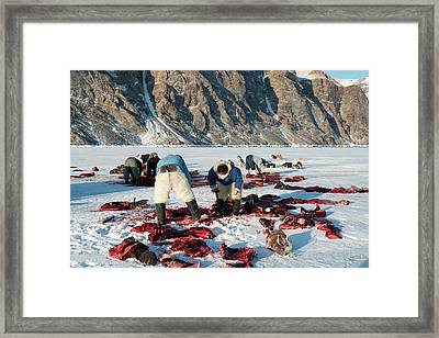 Inuit Hunters Butchering A Walrus Framed Print by Louise Murray