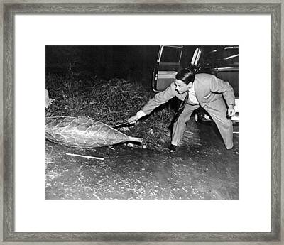 Invasion Of The Body Snatchers  Framed Print by Silver Screen
