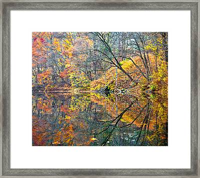 Framed Print featuring the photograph Invasion by Tom Cameron