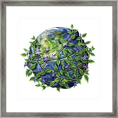 Invasive Plants Framed Print by Nicolle R. Fuller