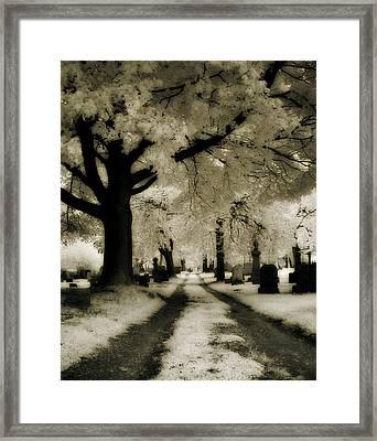 Invisible Light Framed Print