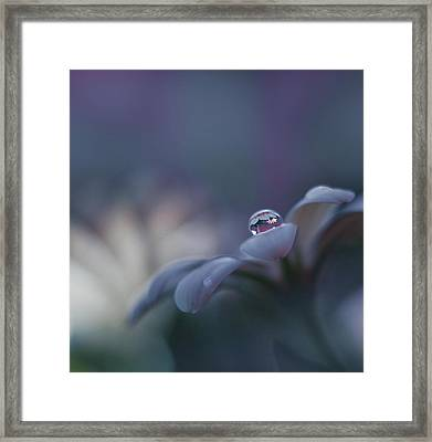 Invisible Soul... Framed Print
