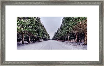 Invitation From The Pines Framed Print by Everet Regal