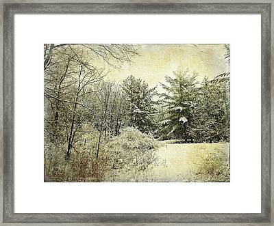 Invitation To Winter  Framed Print by Dianne  Lacourciere