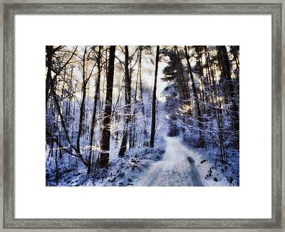 Inviting For A Sunday Walk Framed Print