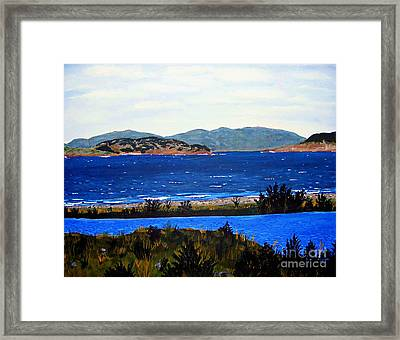 Framed Print featuring the painting Iona Formerly Rams Islands by Barbara Griffin