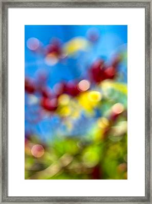 iPhone Case - Colors Of Autumn Framed Print