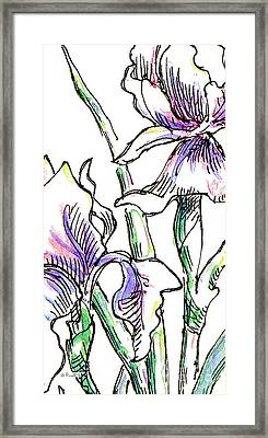 iPhone-Case-Flowers-Iris2 Framed Print by Gordon Punt