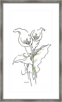 iPhone-Case-Lily-Painting2 Framed Print by Gordon Punt