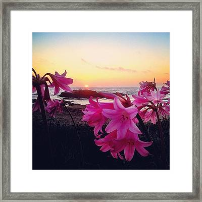 #iphoneonly Framed Print by Kevin Henney