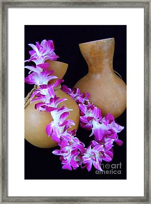 Ipu And Orchid Lei Framed Print by Mary Deal