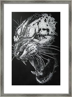 Ire Framed Print by Barbara Keith