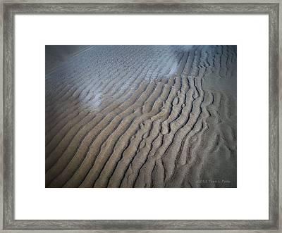 Ireland Beach Framed Print by Tara Potts