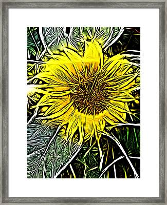 Irereo Framed Print by Jeff Iverson