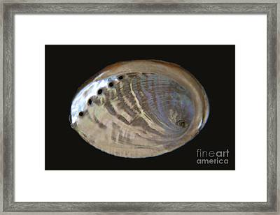 Iridescence Framed Print