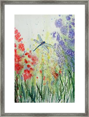 Iridescent Dragonfly Dances Among The Blooms Framed Print by Susan Duda