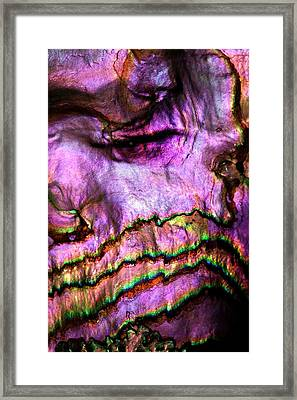Iridescent Nacre Abalone Shell Colour Framed Print