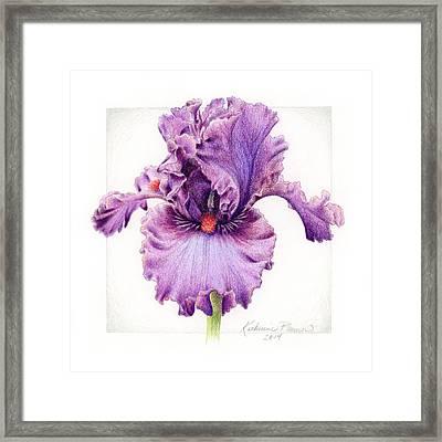 Iris 1 Asian Plum Framed Print