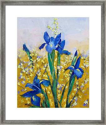 Iris And Forsythia Framed Print