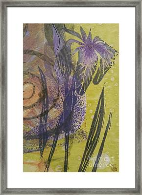 Iris And Spiral Framed Print by Cynthia Lagoudakis