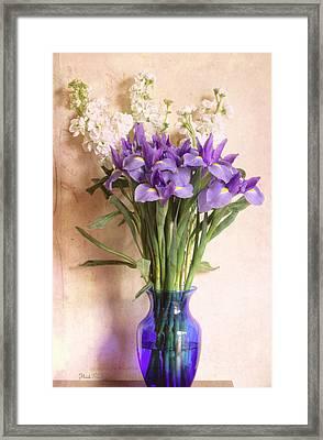 Iris And Stock  Framed Print by Heidi Smith