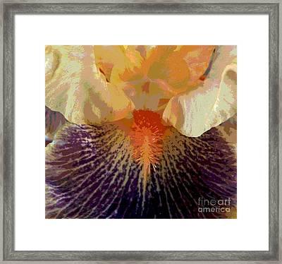 Framed Print featuring the photograph Iris Beard by Sally Simon