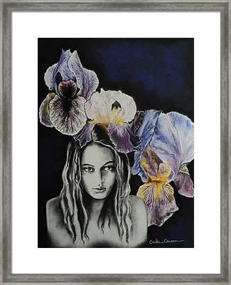 Iris Framed Print by Carla Carson