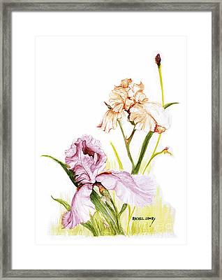 Iris Duo Framed Print