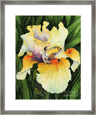 Framed Print featuring the painting Iris Elegance by Barbara Jewell