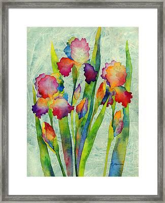 Iris Elegance On Green Framed Print