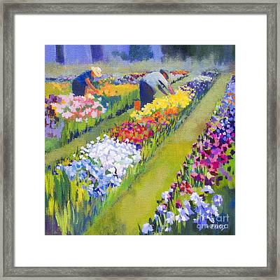 Iris Farm Framed Print by Bernard Marks