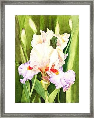 Iris Flower Dancing Petals Framed Print by Irina Sztukowski