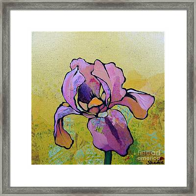 Iris I Framed Print by Shadia Derbyshire